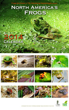 2014 Calendar North American's Frogs by Sara Viernum, The Wandering Herpetologist and Susan Newman, Frogs Are Green