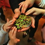 Kids with Pet Frogs and other Wildlife