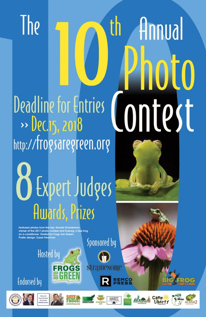 10th photo contest hosted by frogs are green