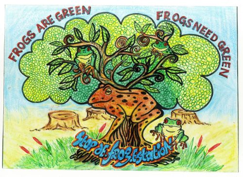 1st Place Winner, Afreen Kapoor, India, Frogs Are Green Kids Art Contest, Best Typography