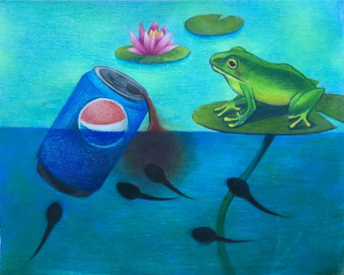 3rd Place Winner, Cynthia Cao, USA, Frogs Are Green Kids Art Contest, Best Environmental Art