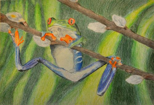Honorable Mention, Shane Meledathu, New Jersey, Frogs Are Green Kids Art Contest, Best of Jersey City