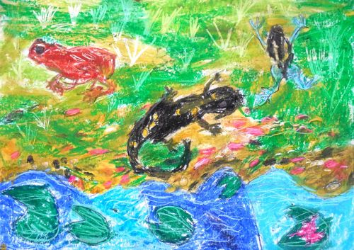 Honorable Mention, Csenge Markus, Hungary, Frogs Are Green Kids Art Contest - Ages 7-9