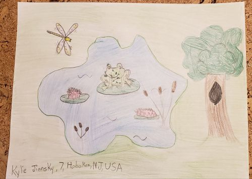 1st Place, Kylie Jiansky, 7 years old, Hoboken, NJ, USA