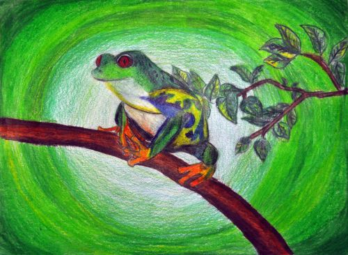 Honorable Mention, Nishat Poppy, New Jersey, USA, Frogs Are Green Kids Art Contest, Best of Jersey City