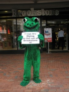 PETA protest in front of Brookstone store, Boston (Minneapolis Animal Rights Examiner)