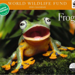 Frog Gifts for the Holidays