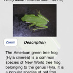 Five Interesting Frog Apps for iPhone and iPad