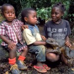 Goliath Frog – The World's Biggest Frog
