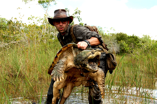 coyote peterson with snapping turtle
