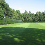 The Benefits of Organic Lawn Fertilizers