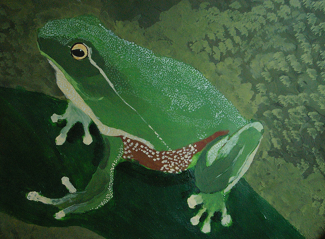 2nd Place 10-12 yrs 2012 Frogs Are Green Kids' Art Contest - Andrew Wang