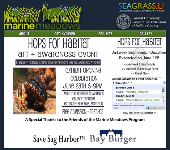 hops for habitat art and awareness in montauk