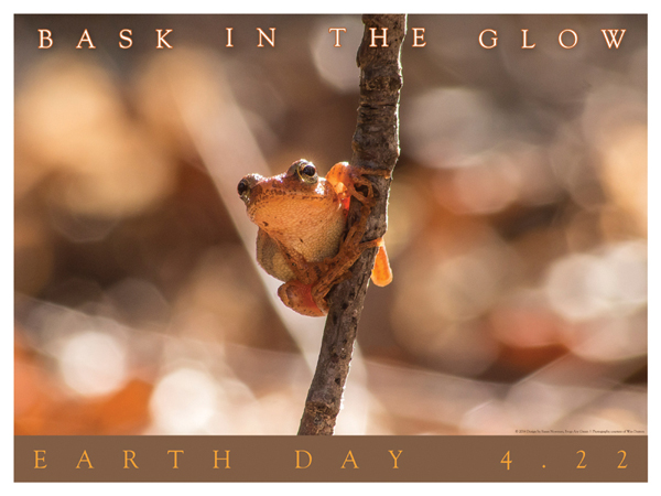 Earth Day poster with frog photographer, Wes Deyton and designed by Susan Newman