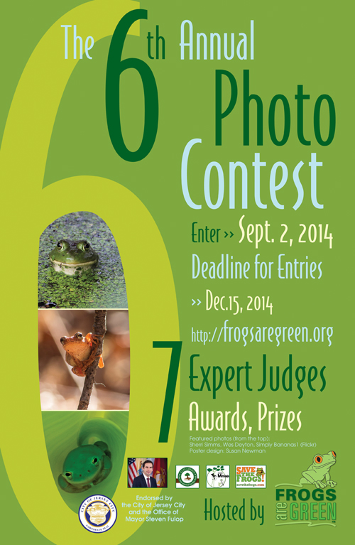 6th annual frogs are green photo contest