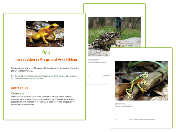 Book interior design for Frogs, Amphibians and their Threatened Environment by Susan Newman