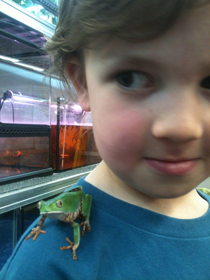 Oliver with the Tiger Monkey Frog at the Manchester museum