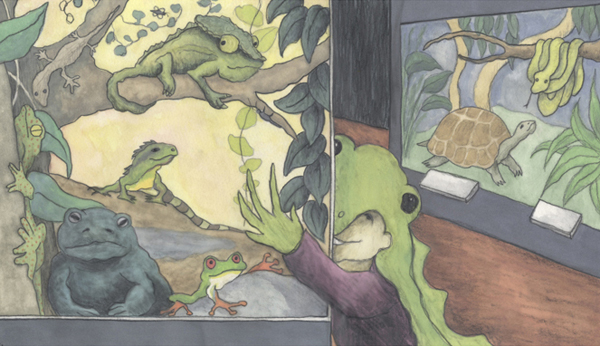 inside the vivarium - illustration from the book