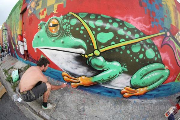 Sao Paulo Frog Mural