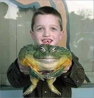 boy with gigantic frog