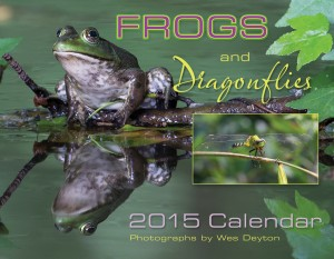 2015 Calendar Frogs and Dragonflies