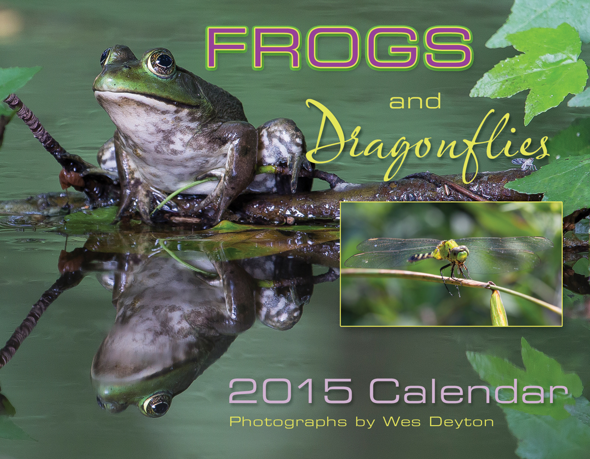 Frogs and Dragonflies 2015 Calendar