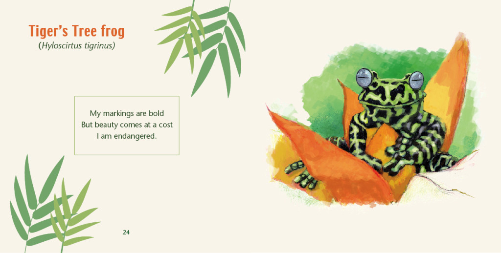 Rainforest Frogs - Haiku by Caley Vickerman, Illustrated by Mark Lerer, Edited by Susan Newman, Foreword by Franco Andreone, Designed by Susan Newman