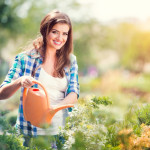 7 Garden Maintenance Tips in Autumn