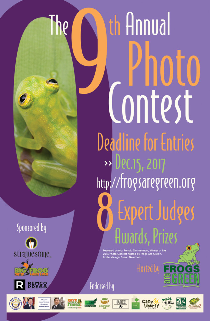 2017 Photography contest hosted by frogs are green. Photo of glass frog courtesy our 2016 winner Ronald Zimmerman.