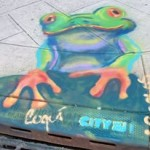 Colorful Catch Basins around Jersey City Star a Red-eyed Tree Frog