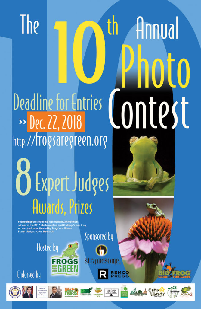 10th annual photo contest hosted by Frogs Are Green. Theme: Saving Life in the Rainforest.