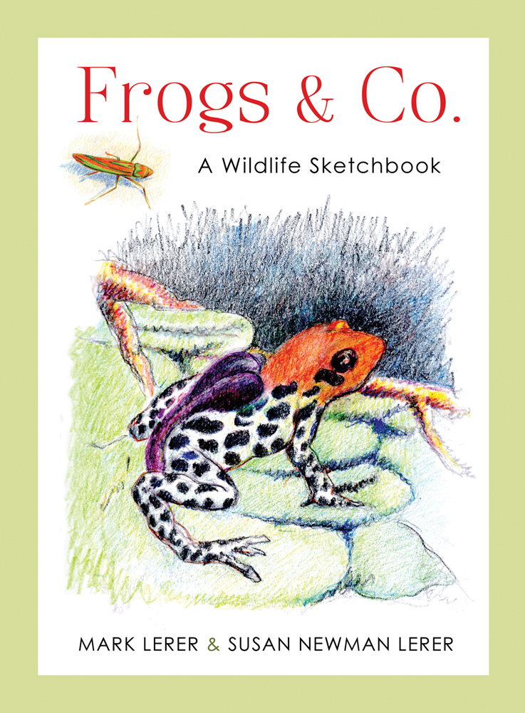 Frogs & Co. A Wildlife Sketchbook by Newman Lerer