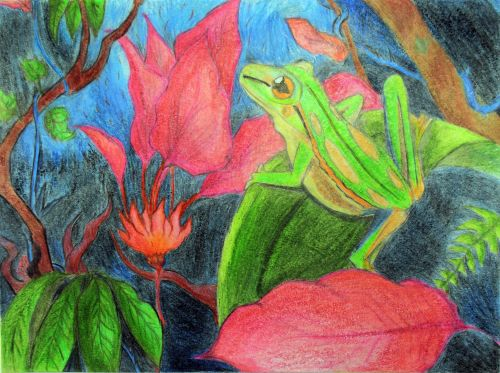 2nd Place Winner, Amir Shadkam, New Jersey, USA, Frogs Are Green Kids Art Contest, Best of Jersey City
