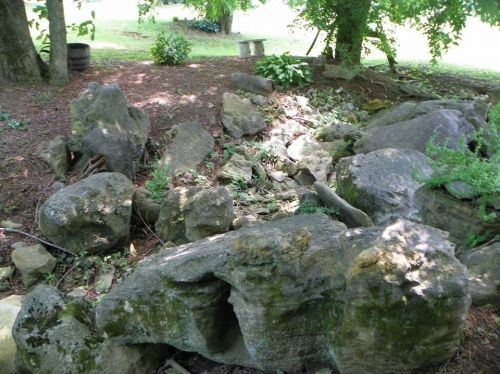 Frog Habitat at Sage Hill Farm in Tennessee