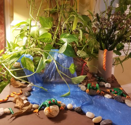 3D Rainforest Life by Vihaan Deshmukh, 7yrs, New Jersey USA