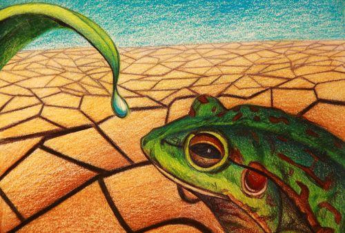 2nd Place Winner, Irene Qiao, USA, Frogs Are Green Kids Art Contest, Best Environmental Art