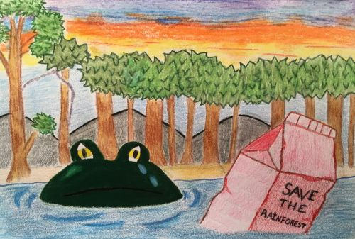 3rd Place, Eileen-Nyaba-16-yrs-old-Save-the-Rainforest-Jersey-City-NJ-USA