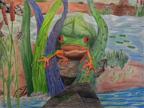 1st Place Winner, Reshma Modi, New Jersey, USA, Frogs Are Green Kids Art Contest, Best of Jersey City