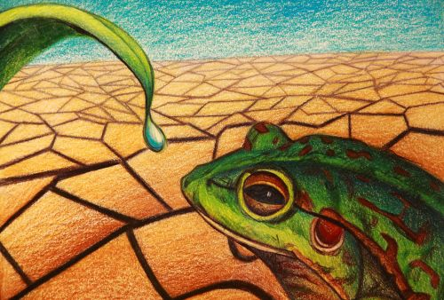 2nd Place Winner, Irene Qiao, USA, Frogs Are Green Kids Art Contest, Best Environmental Art