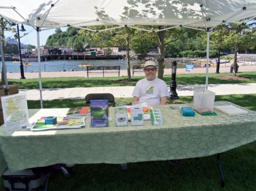 Frogs Are Green's table with books, Tshirts, promotional materials and space for children to draw.