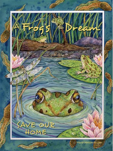 A Frog's Dream - Illustrated by Sherry Neidigh, Designed by Susan Newman