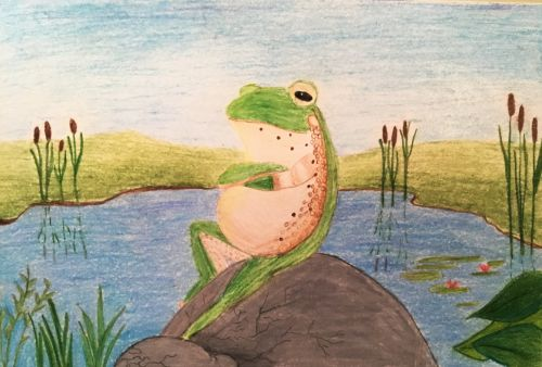 Simerjeet Mudhas, 15 yrs old, Chill Frog, Jersey City, NJ, USA