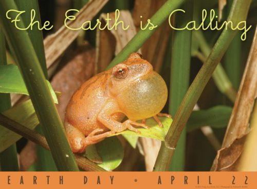 The Earth is Calling