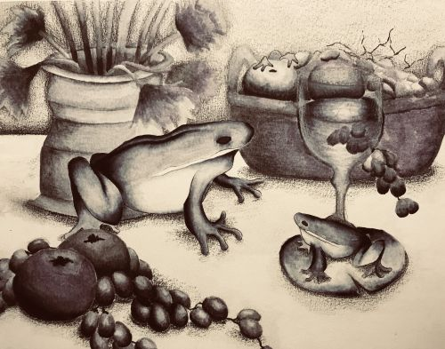Teresa Tao, 12 years old, CA, Frog still-life, black and white,