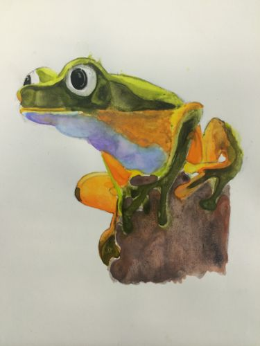3rd Place Winner, Rachel Shneberg, New Jersey, USA, Frogs Are Green Kids Art Contest, Best of Jersey City