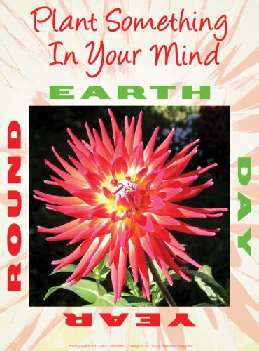 Plant something in Your Mind - Year Round