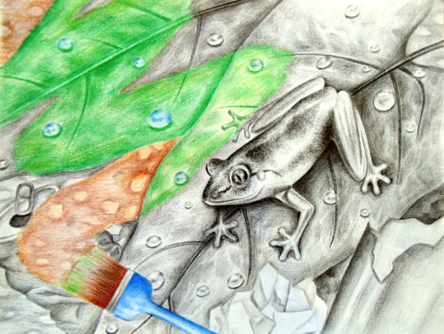 Honorable Mention, Lily Liu, Canada, Frogs Are Green Kids Art Contest, Ages 13-16