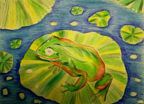 1st Place Winner, Justin Hou, New Mexico, Frogs Are Green Kids Art Contest - Ages 7-9