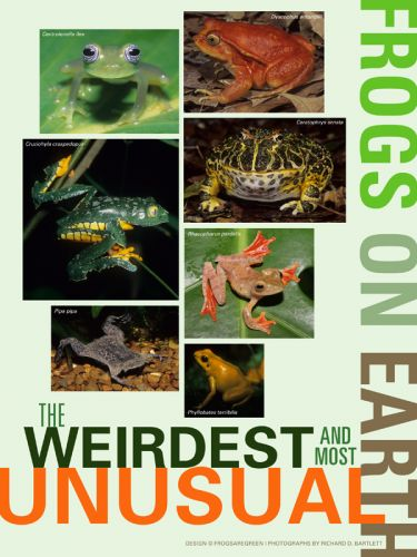 Weirdest Frogs on Earth Poster