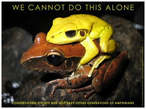 We Cannot Do This Alone - Photo by Kerry Kriger, Designed by Susan Newman